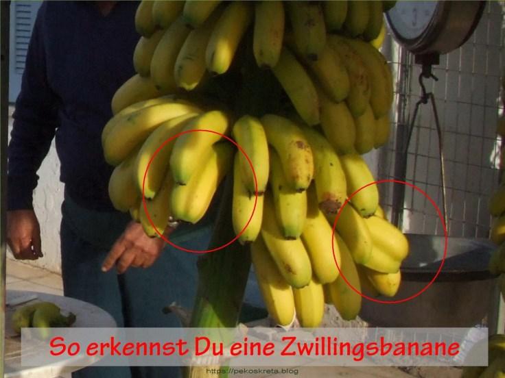 Banana05