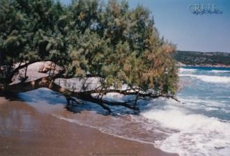 Karavostasi_Beach_04
