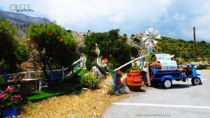 Kreta-Car_a095