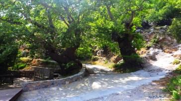 Kreta_Omalos_003