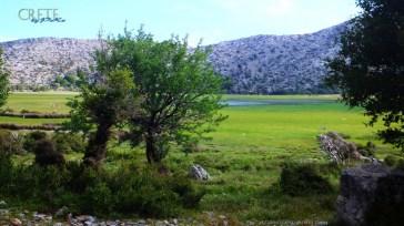 Kreta_Omalos_020