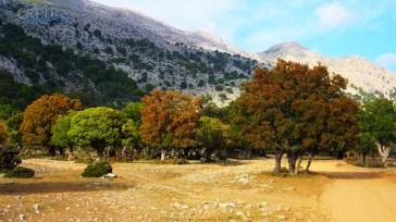 Kreta_Omalos_022