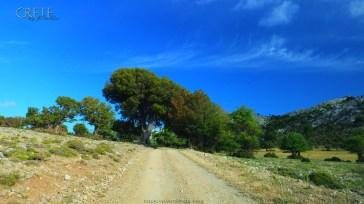 Kreta_Omalos_025